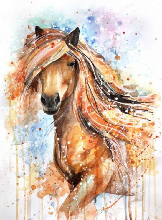Картина по номерам 40x50 Волшебная лошадь